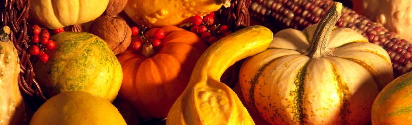 a pile of various shaped orange fall pumpkins