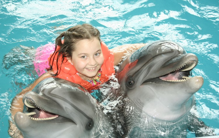Discovery Cove Vacation Package