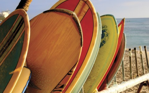 colorful surfboards leaning on surf rack