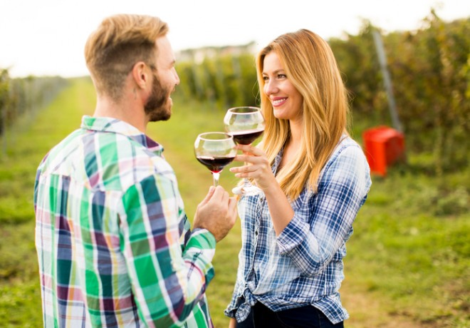Cheerful couple wearing flannels clinking red wine glasses outdoors