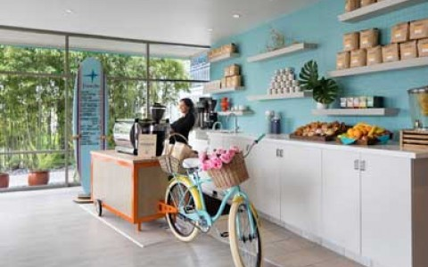 little cute coffee shop with blue wall, floating shelves and a beach cruiser bike with flowers in handlebar basket