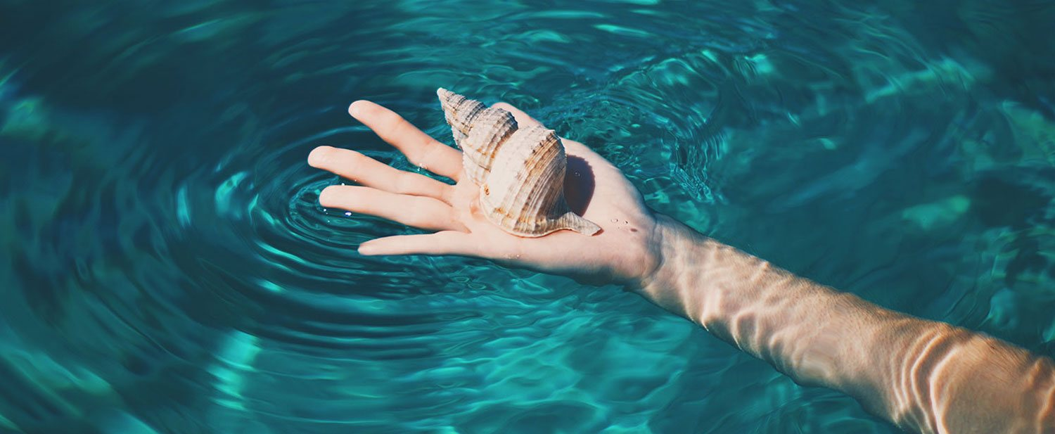 hand in blue water holding snail shell