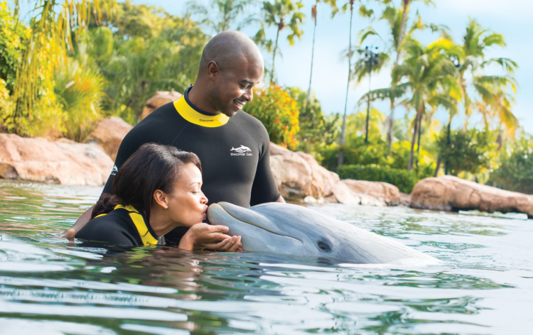 Discovery Cove Inset