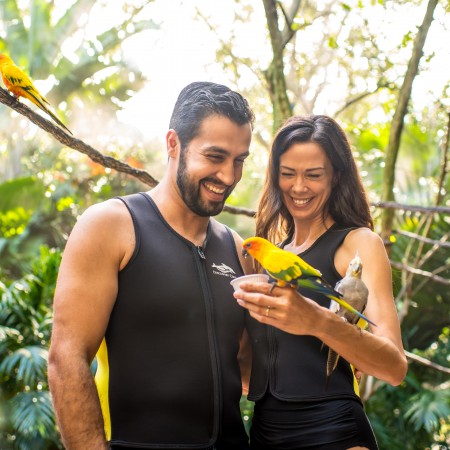 Discovery Cove Romantic Getaway Package