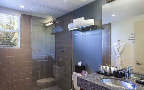 Full bathroom with brown tiled shower walls & granite countertop