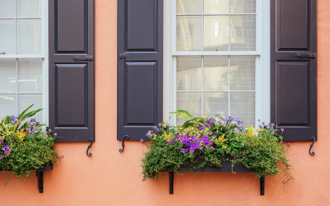 flowers on windowsills on an orange building