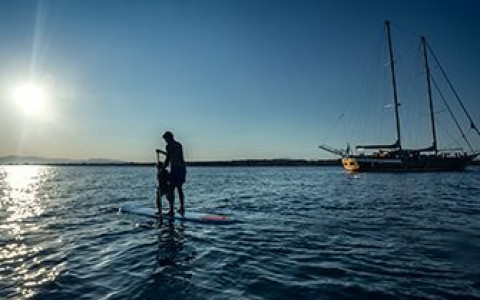 two people paddleboarding on the ocean