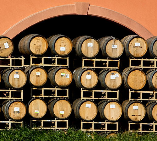 Rows of wine barrels outside next to green bush