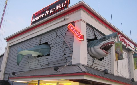 Ripley's believe it or not museu. Facade has fake shark crashing into and out of the building