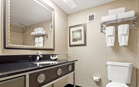 The Florida Hotel Guestroom Bathroom