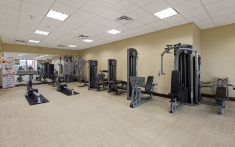 downloadfile 8 fitness center