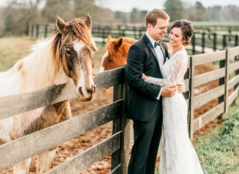 Wedding couple hugging next to pen with horses