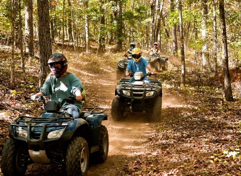 People driving ATV carts through path in the woods