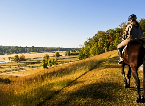 Woman horseback riding on vast green field