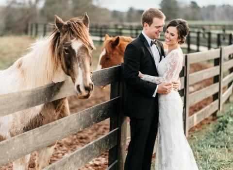 bride and groom taking photos outside in front of horses