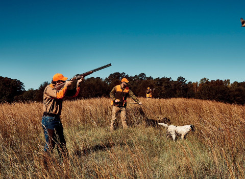 men hunting with dog