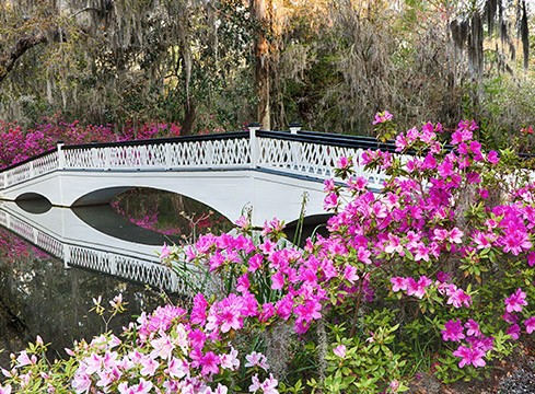drayton hall bridge