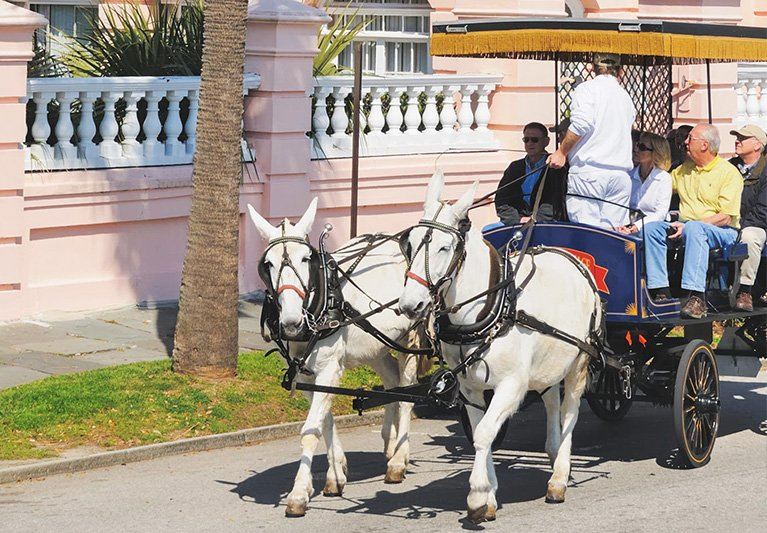 horse drawn carriage through Charleston