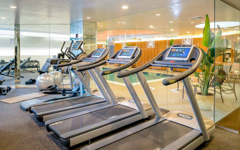 row of treadmills overlooking the indoor pool
