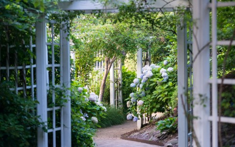 Garden view with archway