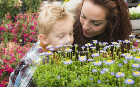 Woman & small boy looking at flowers