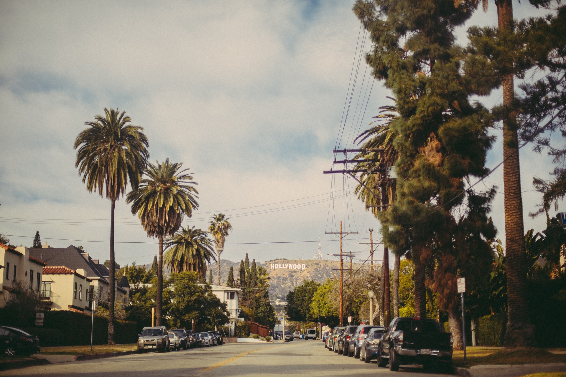 Street lined with palm trees and with Hollywood sign in the distance