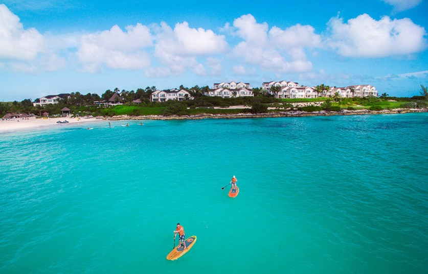 two people paddle boarding in the ocean