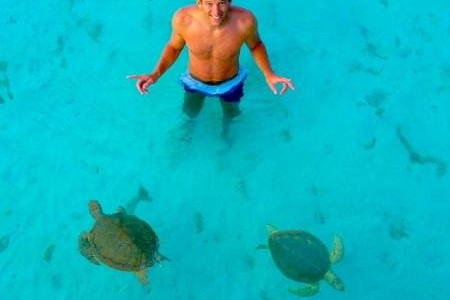 in the sea with turtles
