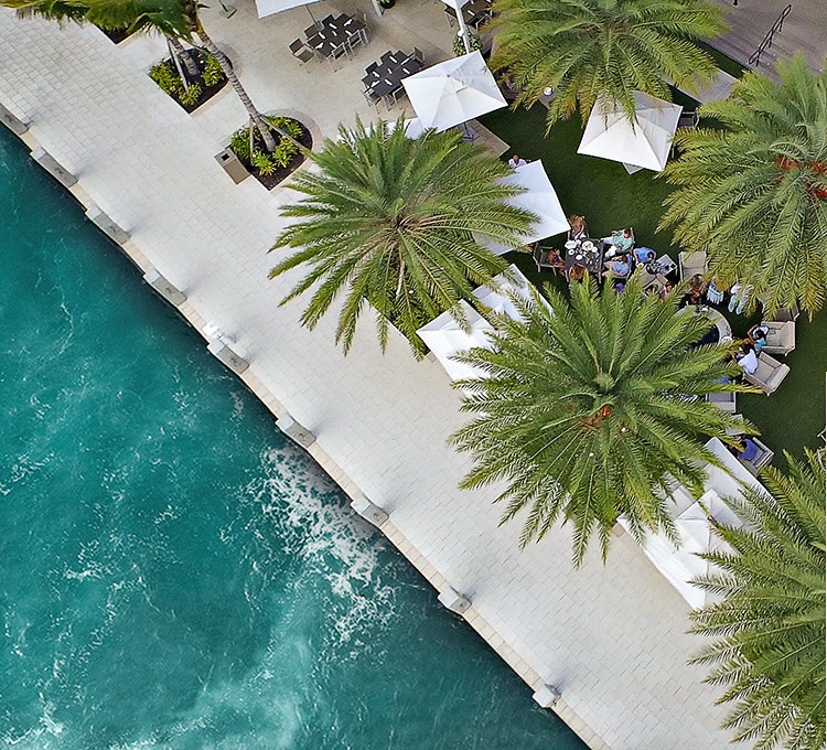 aerial view of a waterfront outdoor patio space covered with large palm trees