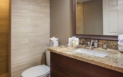 Bathroom with granite counter top, mirror & toilet