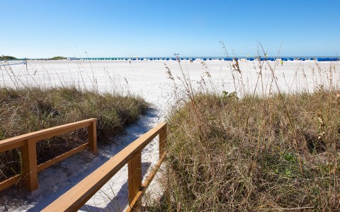 Path with wooden railing surrounded by tall grass leading to beach