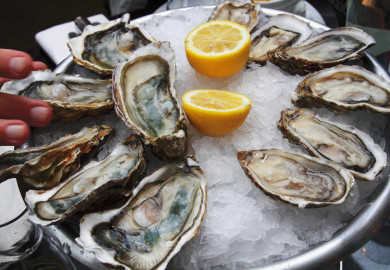 san fransisco waterbar oyster happy hour