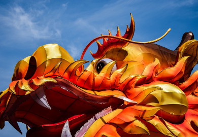 Close up on head of Chinese dragon parade float