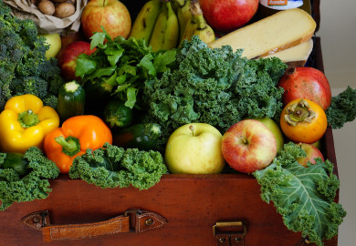 Assortment of fruits and vegetables