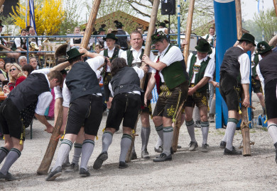 Men in lederhosen lifting long wooden poles at a festival