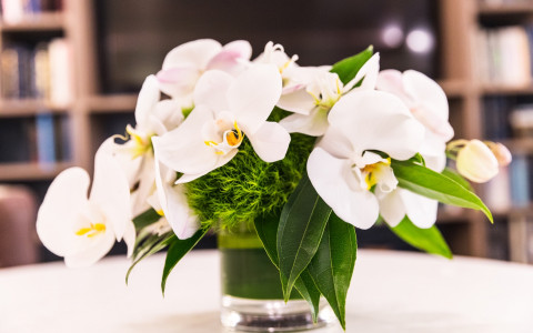 small vase of white orchids on a white table