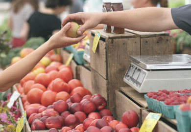 Person buying an apple at a farmers market
