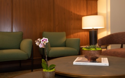 lobby with green armchairs and purple orchid on coffee table