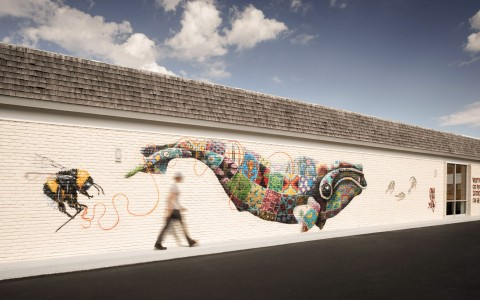 Mural of a colorful whale on the exterior of the building