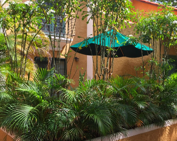 courtyard with lush plants and a green umbrella