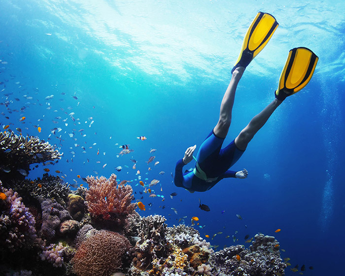 scuba diver reaching the coral reef