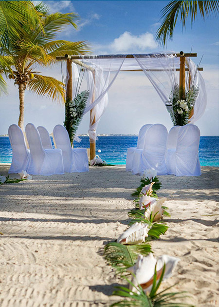 wedding chairs on the sandy beach