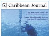 cover of Caribbean journal with a scuba diver on the cover
