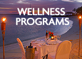 HVB new wellness
