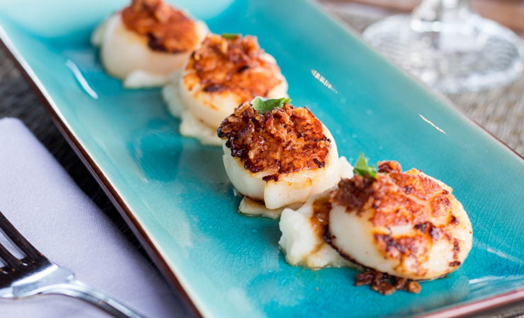 scallops on blue plate