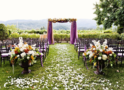 a wedding ceremony set up with chivari chairs and rose petals down the aisle and a purple alter