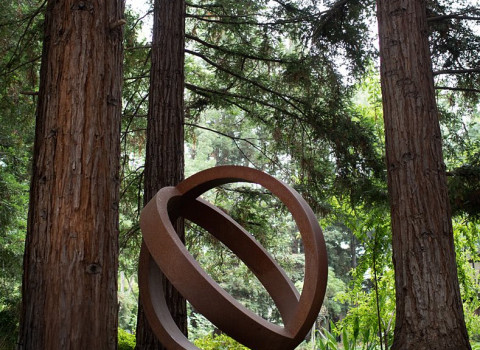 statue in the garden among large redwood trees