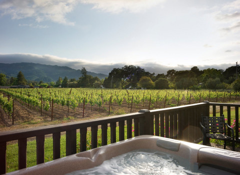 green vineyard trees overlooking a room with a hot tub