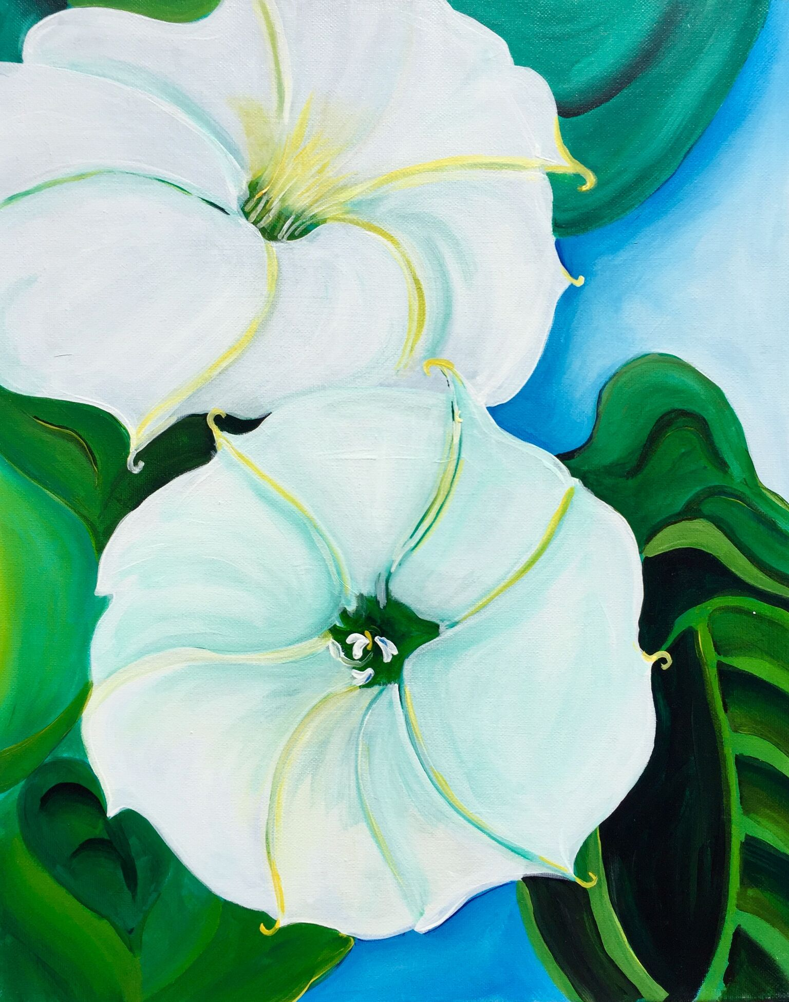 painting of a white morning glory