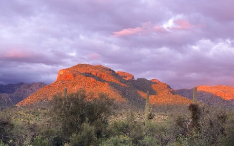 HEC-OutdoorAttractions-SABINO CANYON-7-58f7cb07aaa66.jpg